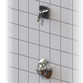 Top or Bottom Supply Zenith Built-in Shower
